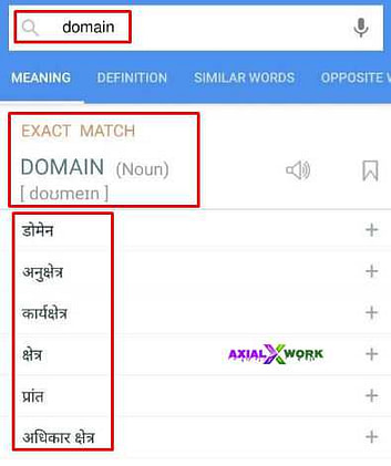 Domian meaning हिंदी