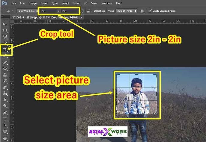 passport size photo size in photoshop
